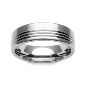Titanium Stripe Accent 6mm Ring