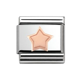 Steel & 9ct Rose Gold Star Charm