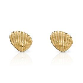 9ct Gold Shell Stud Earrings