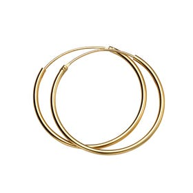 Anahita Gold Plated Silver Small Hoop Earrings
