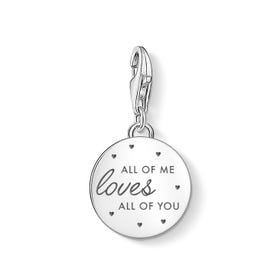 Charm Club Silver All of Me Disc Charm