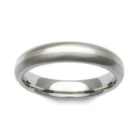 Titanium and 9ct White Gold Stripe Domed 4mm Ring