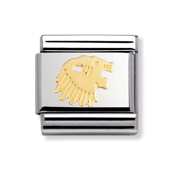 Stainless Steel and 18ct Gold Leo Classic Charm