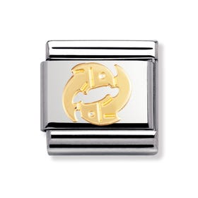 Stainless Steel and 18ct Gold Pisces Classic Charm
