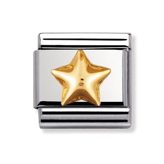 Stainless Steel and 18ct Gold Raised Star Classic Charm