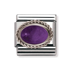 Stainless Steel, Silver & Amethyst February Birthstone Classic Charm